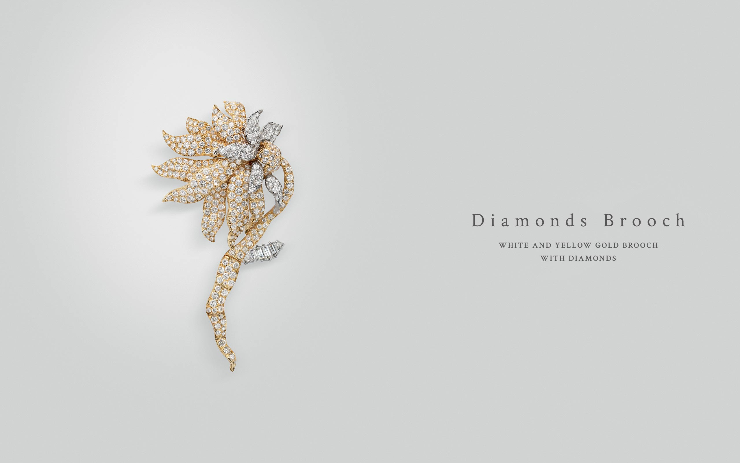 Diamonds Brooch 04 | Maria Gaspari