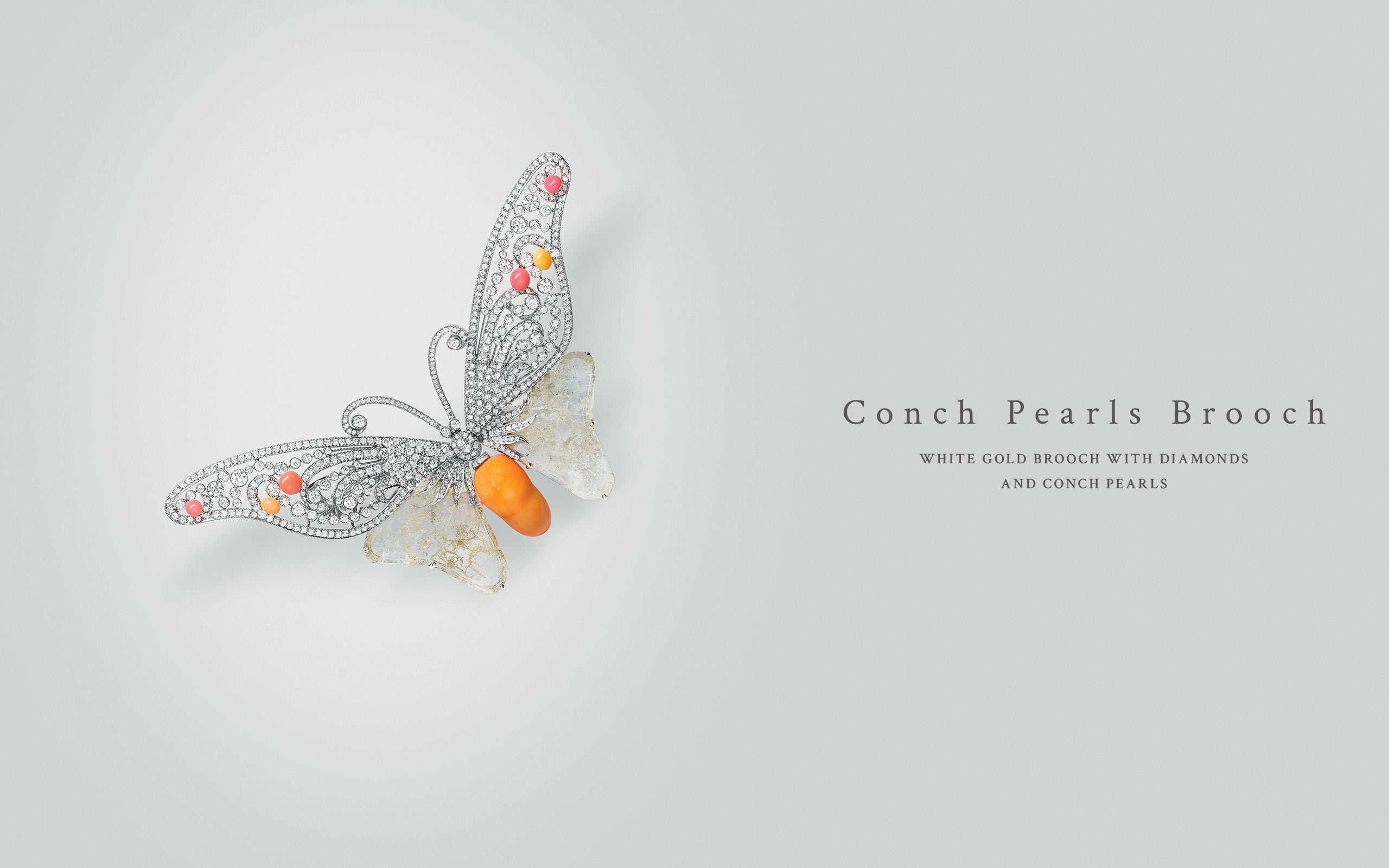 Conch Pearls Brooch 10 | Maria Gaspari